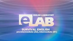 E-lab.-Survival-English_500px